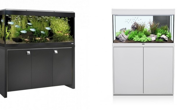 quel aquarium choisir pour vos poissons la gazette d 39 animal valley. Black Bedroom Furniture Sets. Home Design Ideas