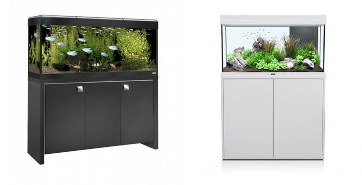 Quel aquarium choisir pour vos poissons la gazette d for Quel cuisiniste choisir 2015